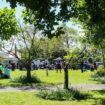 What's Happening in Christchurch Spring 2018?
