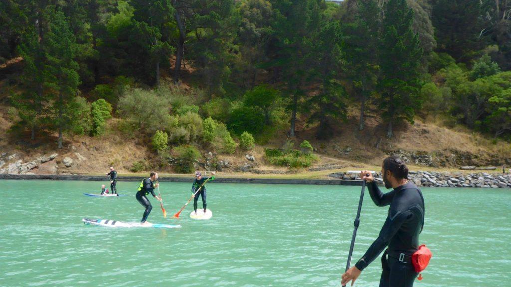 paddleboarding Lyttelton