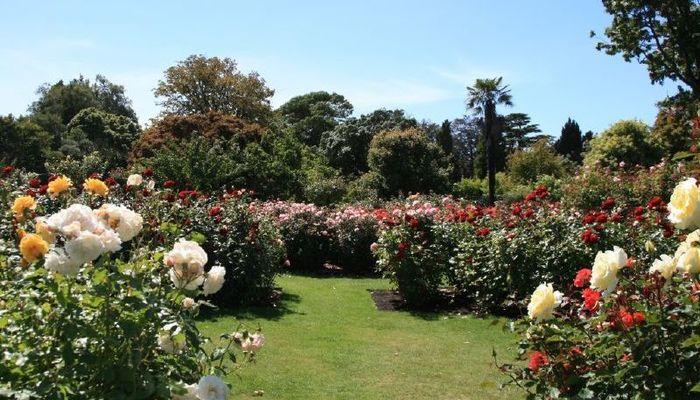 Mona Vale Gardens Christchurch